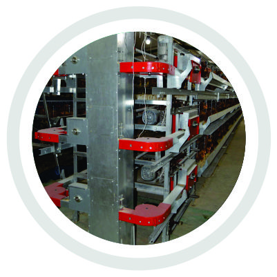 VERTICAL CAGE SYSTEM